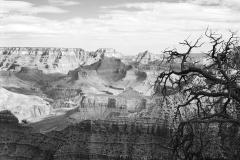 Grand-Canyon-No.-12-2007