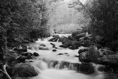 Pine-River-Summer-1998