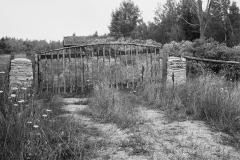 Manitoulin-Island-No.-6-1981